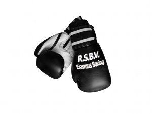 Boxing logo V1